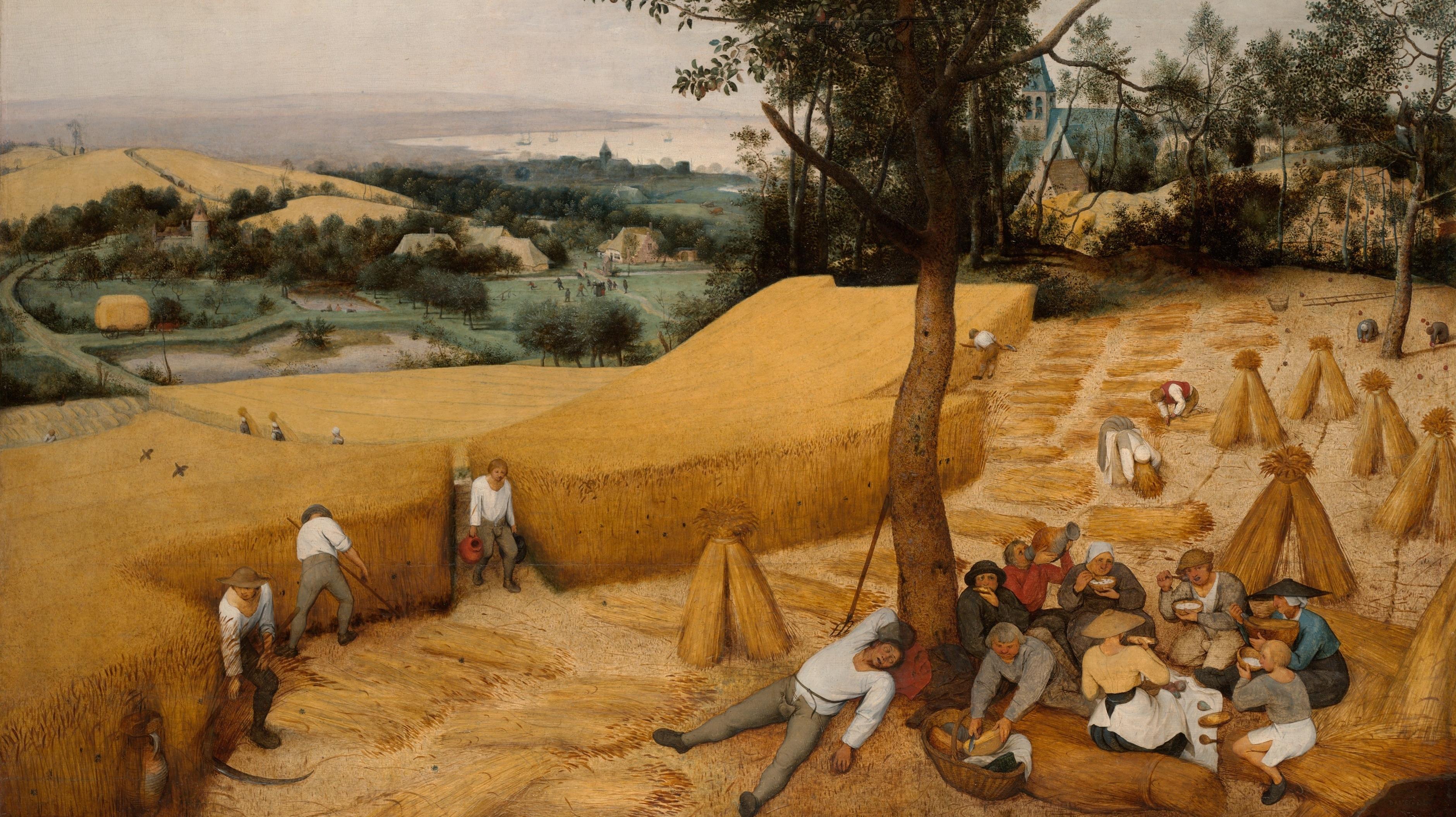 Bruegel - La moisson Flickr.jpg